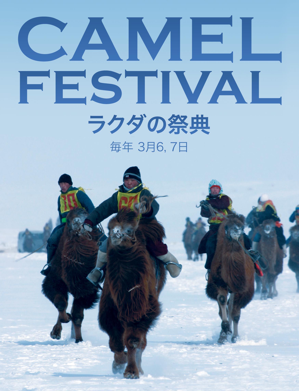 ラクダの祭典 camel festival tum-eco tumeco tour tum eco mongolia gobi